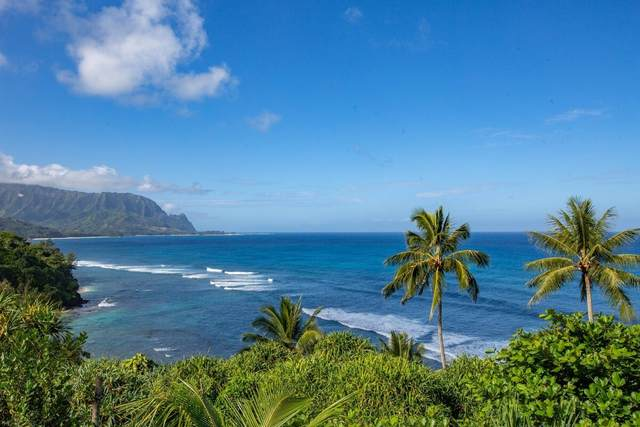 5300 Ka Haku Rd, Princeville, HI 96722 (MLS #654904) :: Kauai Exclusive Realty