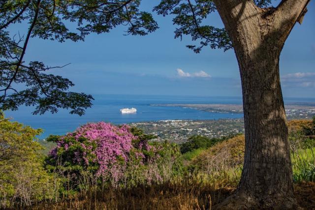 77-410 Ainanani St, Kailua-Kona, HI 96740 (MLS #607213) :: Elite Pacific Properties
