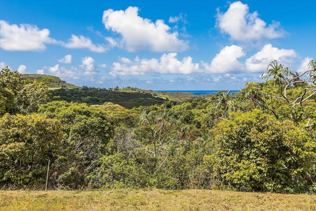 4370 Kahili Makai St, Kilauea, HI 96754 (MLS #608576) :: Kauai Exclusive Realty