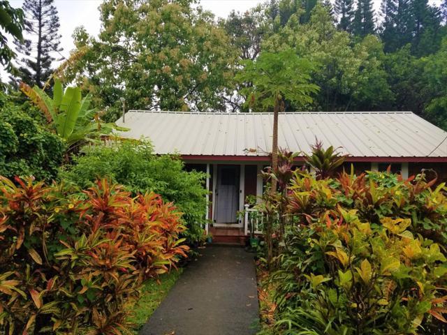 54-3737 Akoni Pule Hwy, Kapaau, HI 96755 (MLS #611487) :: Elite Pacific Properties