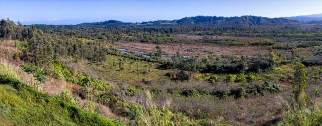 2818 Halaulani Road, Kilauea, HI 96754 (MLS #614146) :: Elite Pacific Properties