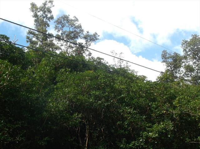 Lanai St, Pahoa, HI 96778 (MLS #614381) :: Elite Pacific Properties