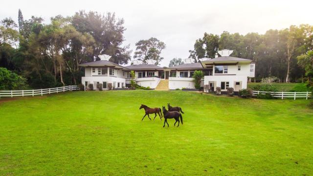 4419-A Kahili Makai St, Kilauea, HI 96754 (MLS #616061) :: Elite Pacific Properties