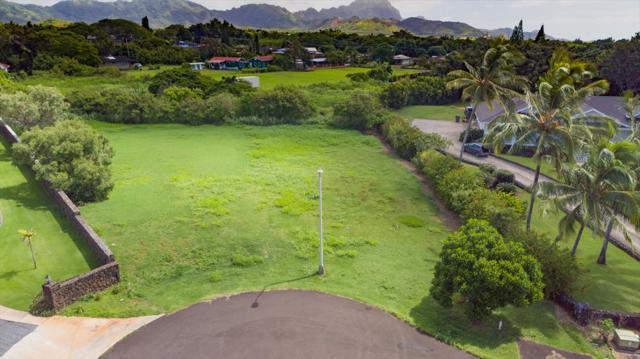 3052 Lauae Pl, Koloa, HI 96756 (MLS #621067) :: Kauai Exclusive Realty