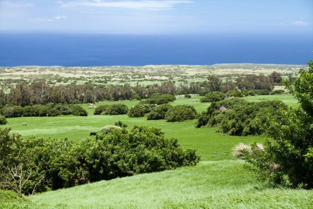 Address Not Published, Hawi, HI 96719 (MLS #621378) :: Elite Pacific Properties