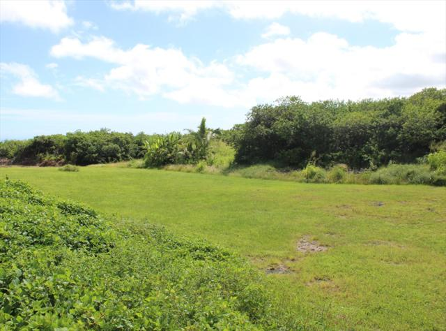 Address Not Published, Naalehu, HI 96772 (MLS #622976) :: Oceanfront Sotheby's International Realty