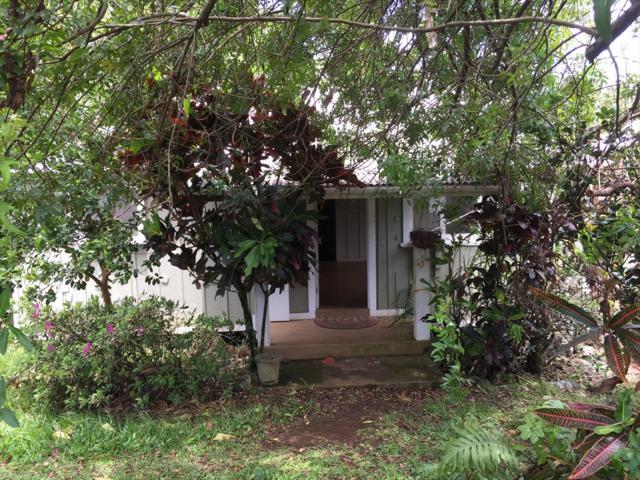 54-3741 Akoni Pule Highway, Kapaau, HI 96755 (MLS #625024) :: Aloha Kona Realty, Inc.