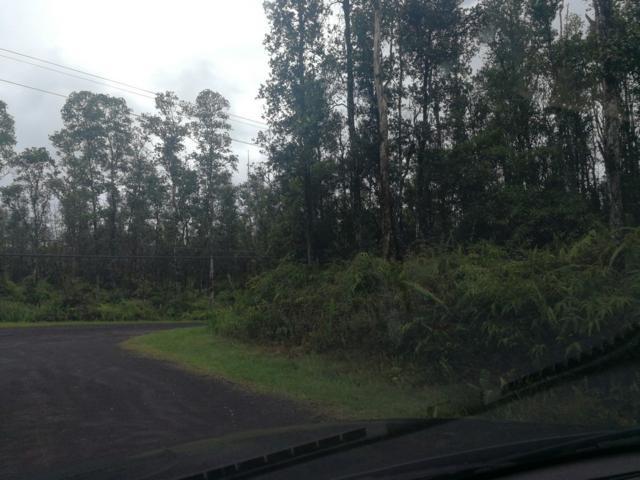 Forest Rd, Pahoa, HI 96778 (MLS #627041) :: Aloha Kona Realty, Inc.