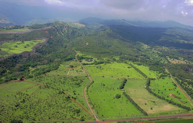 2-2131-Z Kaumualii Hwy., Kalaheo, HI 96741 (MLS #627965) :: Kauai Exclusive Realty