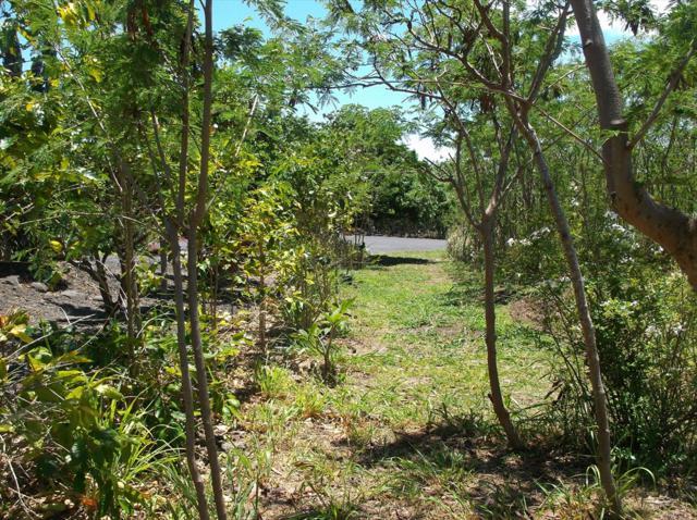 Kia Lua Pl, Naalehu, HI 96772 (MLS #628452) :: Song Real Estate Team/Keller Williams Realty Kauai