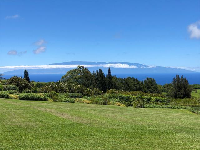 56-3156 Puu Mamo Dr, Hawi, HI 96719 (MLS #628912) :: Aloha Kona Realty, Inc.