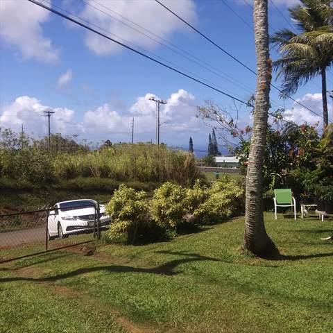 45-611 Mauna Loa St, Honokaa, HI 96727 (MLS #629028) :: Steven Moody