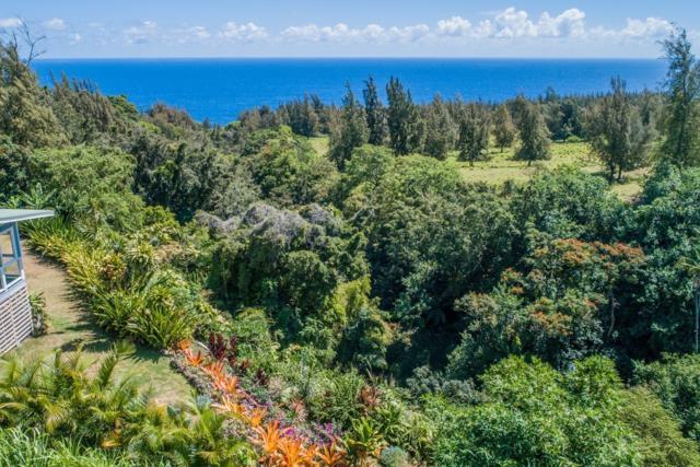 Hoomau St, Honokaa, HI 96727 (MLS #629616) :: Song Real Estate Team | LUVA Real Estate