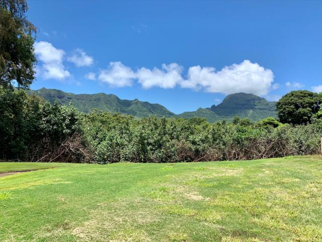 Address Not Published, Lihue, HI 96766 (MLS #630099) :: Elite Pacific Properties