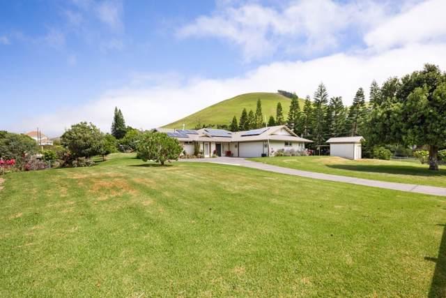 65-1225 Puu Opelu Rd, Kamuela, HI 96743 (MLS #632810) :: Song Real Estate Team | LUVA Real Estate