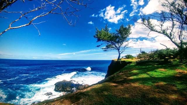 54-247 Honopueo Rd, Kapaau, HI 96755 (MLS #633263) :: Elite Pacific Properties