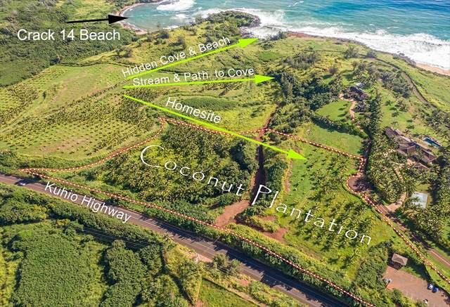 Kapoli St, Anahola, HI 96703 (MLS #634201) :: Elite Pacific Properties