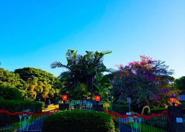 75-642 Halewili Pl, Kailua-Kona, HI 96725 (MLS #634566) :: LUVA Real Estate