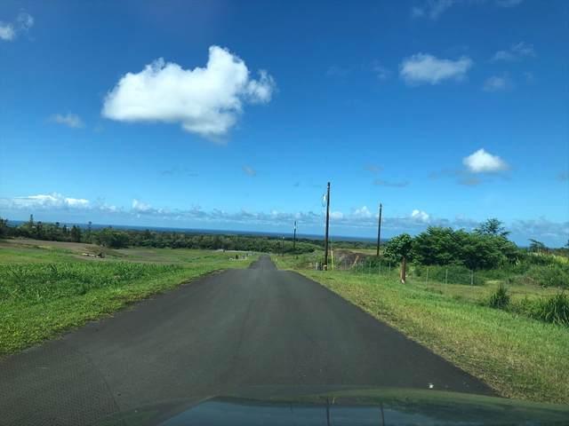 Pulelehua Place, Hilo, HI 96720 (MLS #637552) :: Corcoran Pacific Properties