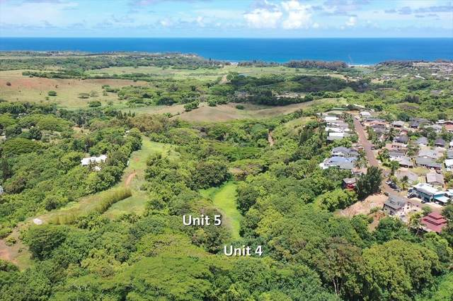 5409 Laipo Rd, Kapaa, HI 96746 (MLS #639160) :: Kauai Exclusive Realty