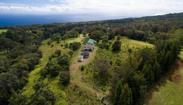 43-1457 Pohakealani Rd, Paauilo, HI 96776 (MLS #640224) :: LUVA Real Estate