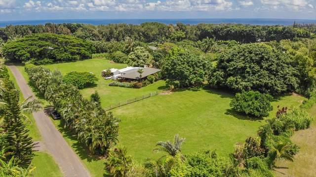 4693 Wailapa, Kilauea, HI 96754 (MLS #642124) :: Steven Moody