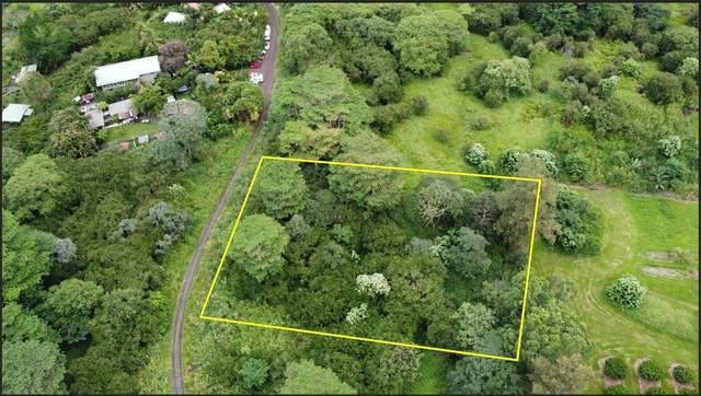 13 MILE RD, Kurtistown, HI 96760 (MLS #644185) :: Aloha Kona Realty, Inc.
