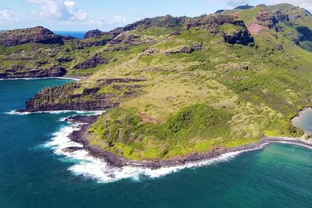 Niumalu, Lihue, HI 96766 (MLS #647206) :: Corcoran Pacific Properties