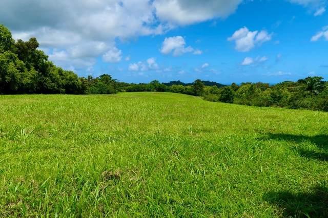 Kaumualii Hwy, Kalaheo, HI 96741 (MLS #648470) :: Kauai Exclusive Realty