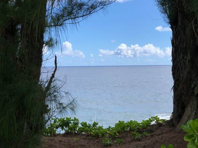 Address Not Published, papeekao, HI 96783 (MLS #649204) :: Corcoran Pacific Properties