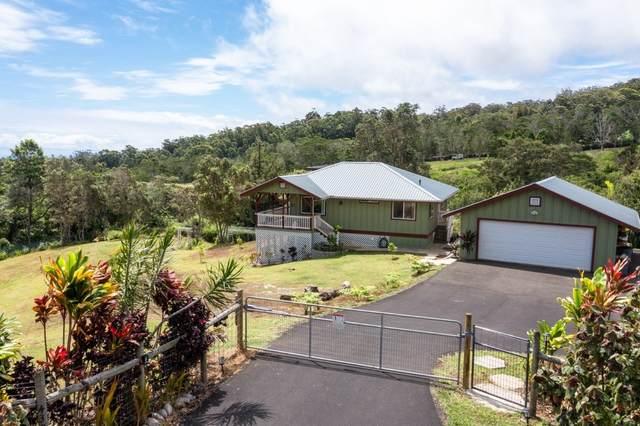 43-2024 Kaapahu Road, Paauilo, HI 96727 (MLS #650824) :: Corcoran Pacific Properties