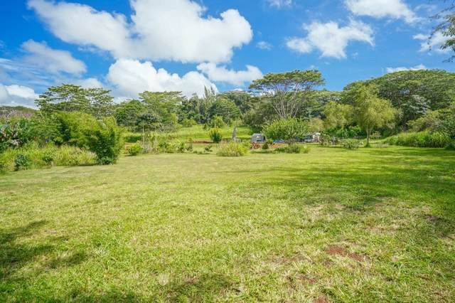 Address Not Published, Kapaa, HI 96746 (MLS #651770) :: LUVA Real Estate
