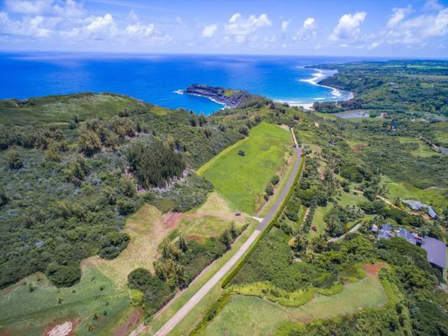 Seacliff Lot #13, Kilauea, HI 96754 (MLS #608242) :: Aloha Kona Realty, Inc.