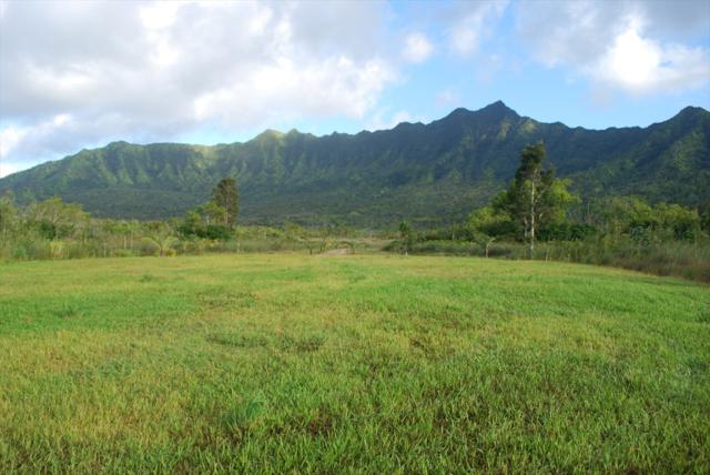 2818 Halaulani Road, Kilauea, HI 96754 (MLS #614146) :: Aloha Kona Realty, Inc.