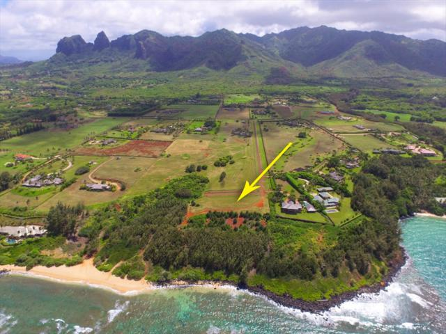 9-D Aliomanu Estates, Anahola, HI 96703 (MLS #615148) :: Elite Pacific Properties