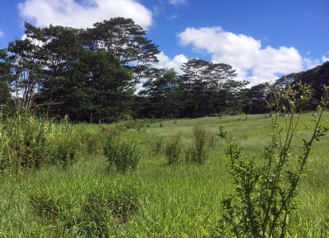 Hoaka Road, Hilo, HI 96720 (MLS #612443) :: Aloha Kona Realty, Inc.