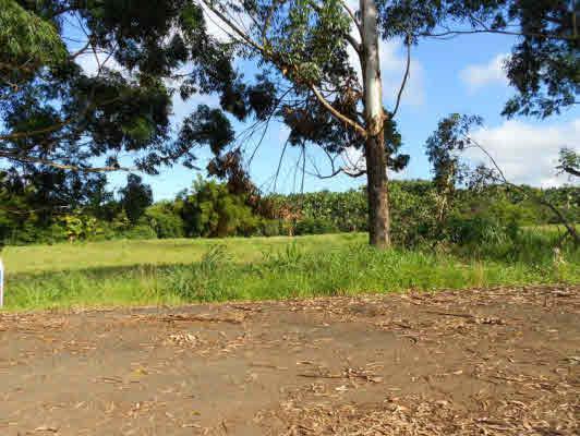 000000, Honomu, HI 96728 (MLS #245884) :: Song Real Estate Team/Keller Williams Realty Kauai