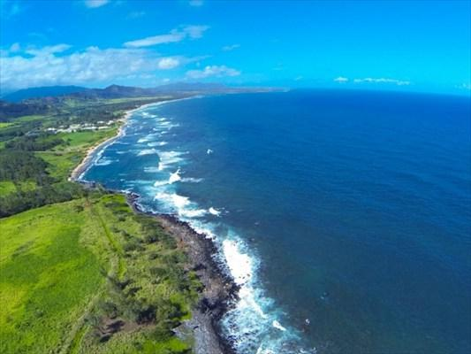 Kuhio Highway, Lihue, HI 96766 (MLS #278042) :: Elite Pacific Properties