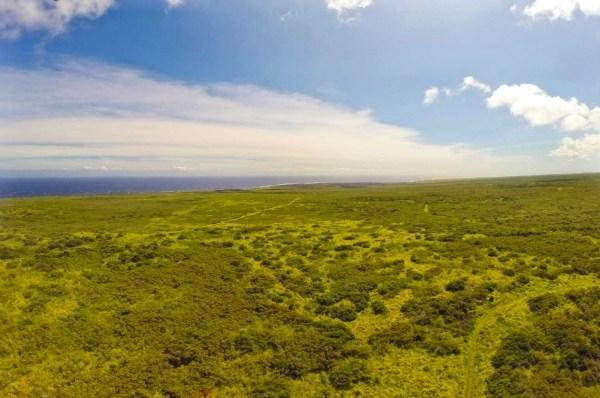 Ka'alu'alu Road, Naalehu, HI 96772 (MLS #278051) :: Elite Pacific Properties