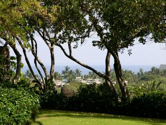 Address Not Published, Kamuela, HI 96743 (MLS #284916) :: Aloha Kona Realty, Inc.