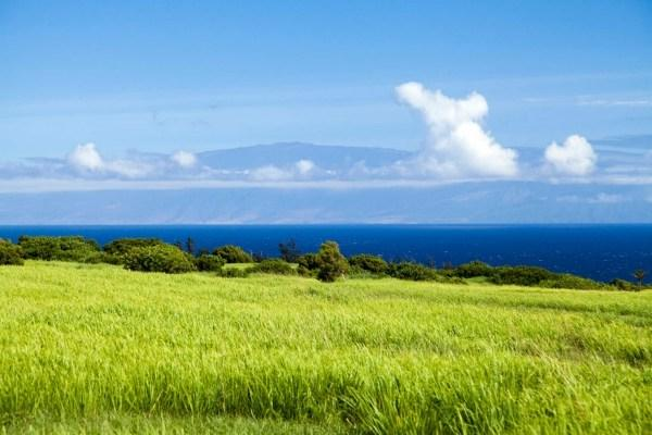 Lokahi Rd, Kapa'au, HI 96719 (MLS #285743) :: Elite Pacific Properties