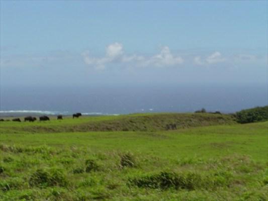 https://bt-photos.global.ssl.fastly.net/hawaii/orig_boomver_1_286608-2.jpg