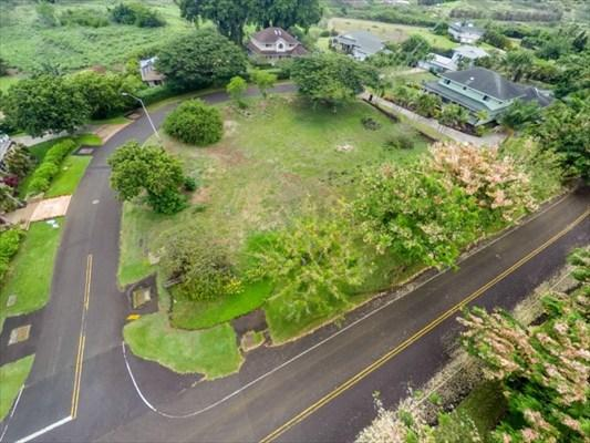 2979 Pua Alani Pl., Koloa, HI 96756 (MLS #286930) :: Elite Pacific Properties