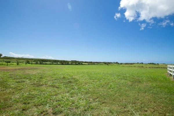1671 Poipu Aina Pl, Koloa, HI 96756 (MLS #289043) :: Elite Pacific Properties