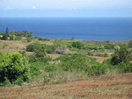Pu'u & Ihu Roads, Kalaheo, HI 96741 (MLS #291387) :: Elite Pacific Properties