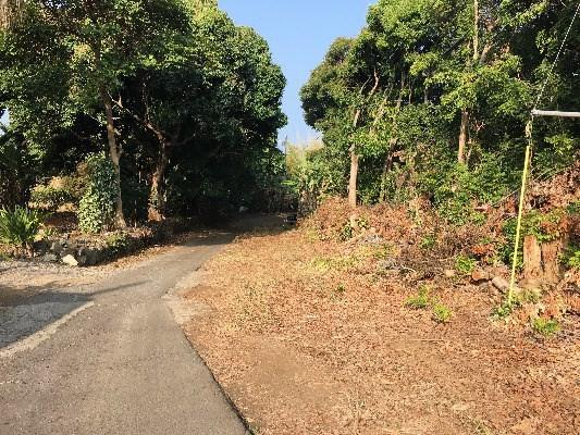Kawanui Place, Kealakekua, HI 96750 (MLS #294459) :: Elite Pacific Properties