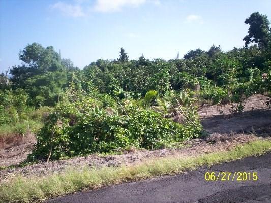 84-1071 Telephone Exchange Rd, Captain Cook, HI 96704 (MLS #295991) :: Aloha Kona Realty, Inc.