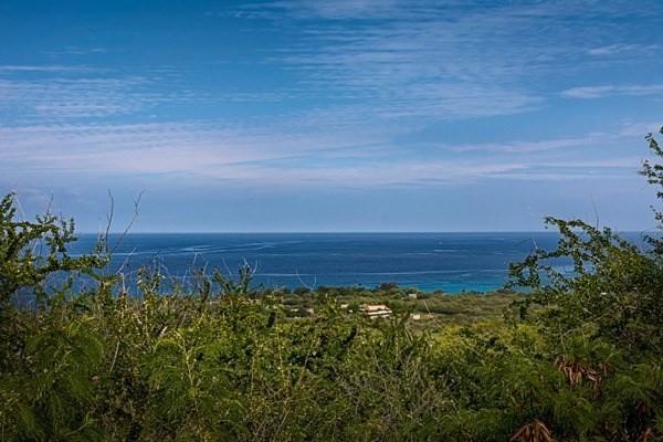 Address Not Published, Kailua-Kona, HI 96740 (MLS #297013) :: Team Lally