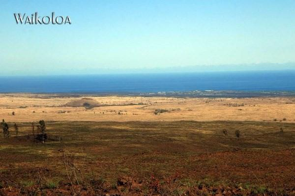 Address Not Published, Kamuela, HI 96743 (MLS #297397) :: LUVA Real Estate