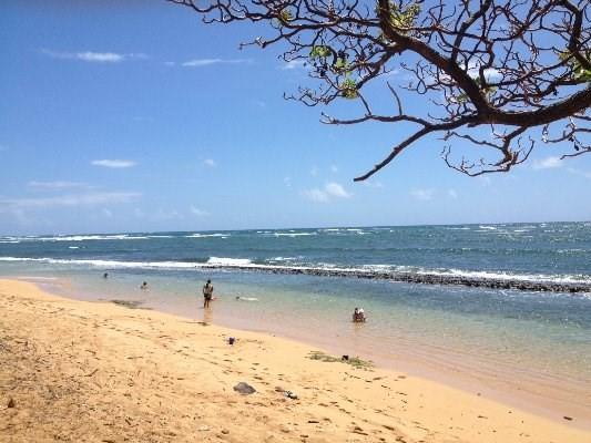 1077 Moanakai Rd, Kapaa, HI 96746 (MLS #297913) :: Aloha Kona Realty, Inc.